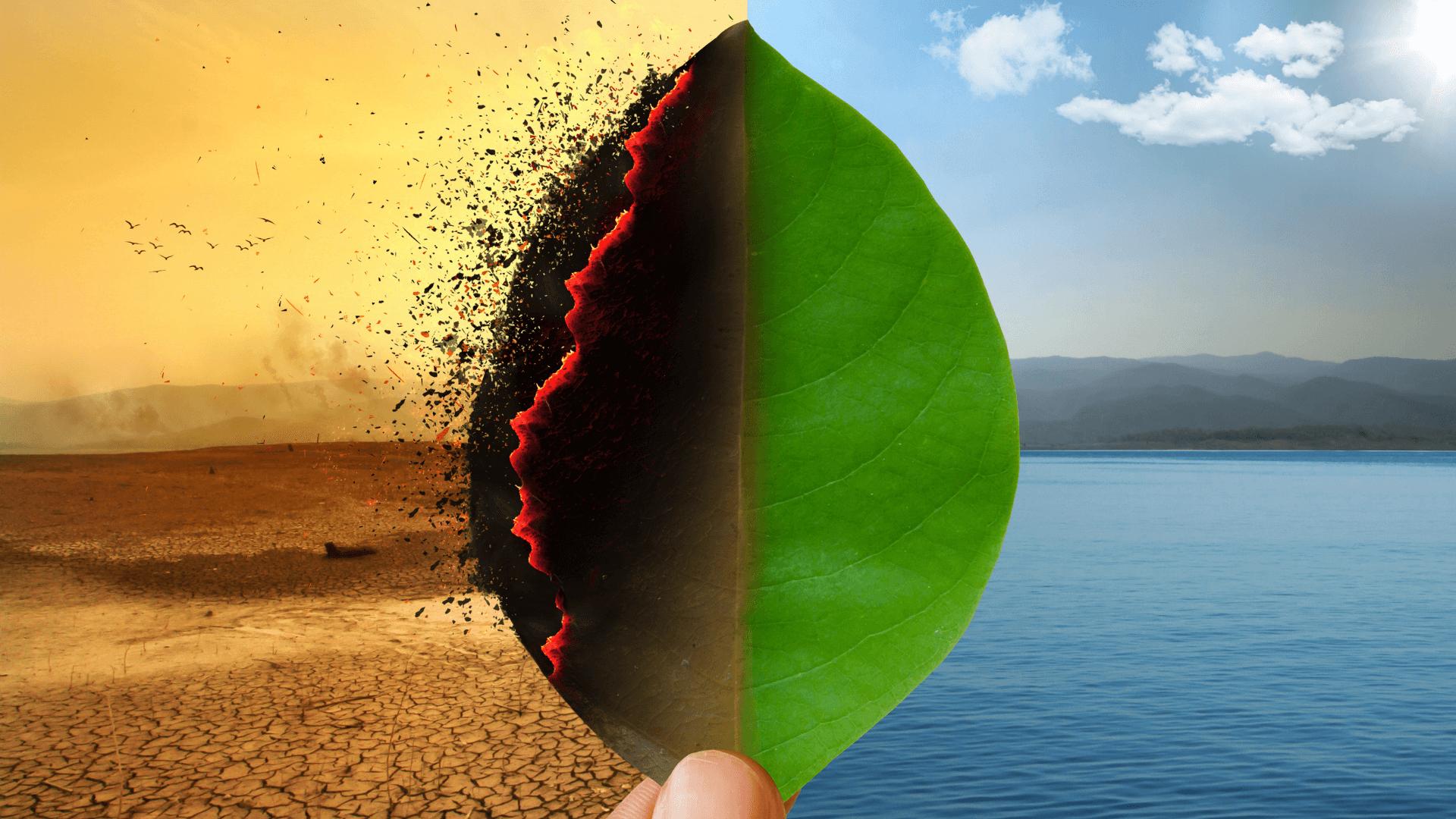 Visualization: Shifting Narratives